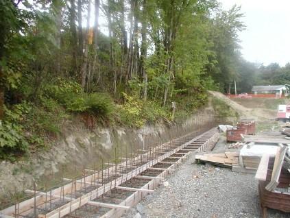 Omega Industrial Site Development